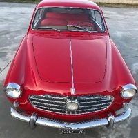 Hen's teeth: 1955 Fiat 1100 Gran Turismo by Viotti