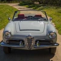 Barn driver: 1965 Alfa Romeo Giulia Spider