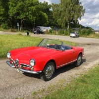 Children and hunting dogs: 1965 Alfa Romeo Giulia Spider Veloce
