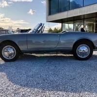 The odd color: 1964 Alfa Romeo Giulia Spider Veloce