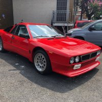 Warrior breed:  1982 Lancia 037 Stradale